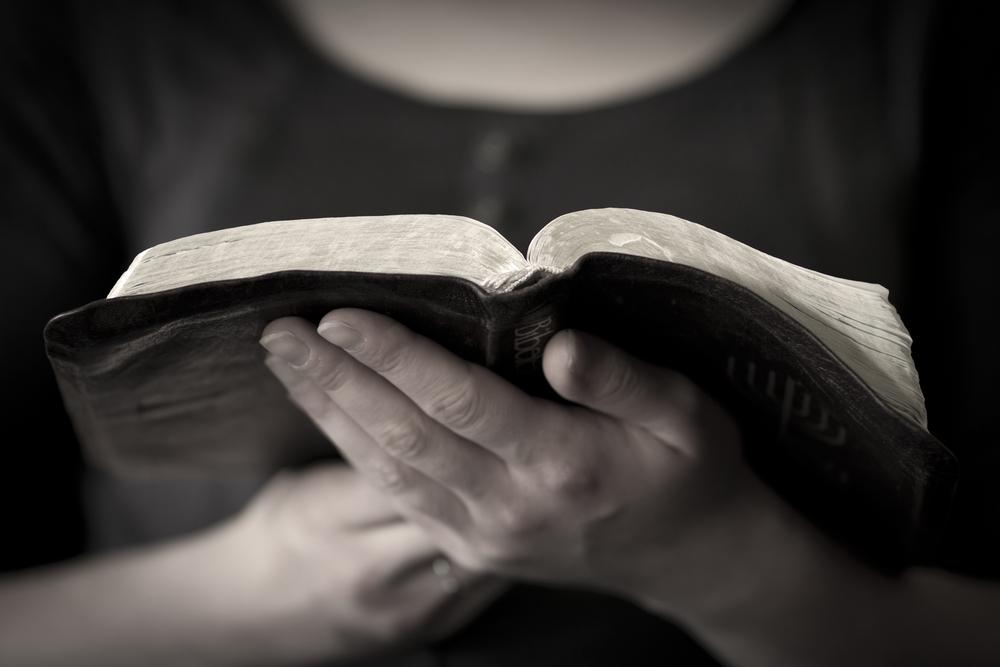 REGRESO A LA CREACIÓN: UNA HERMENÉUTICA ADVENTISTA – Escogidas para ...